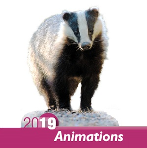 Programme animations 2019_1